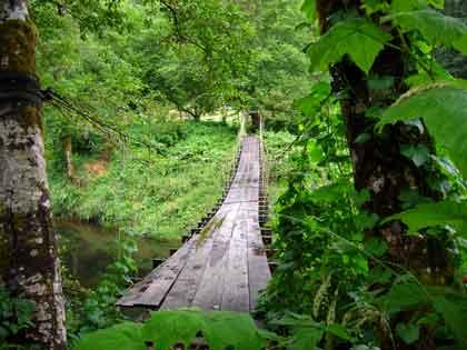 Suspension-Bridge
