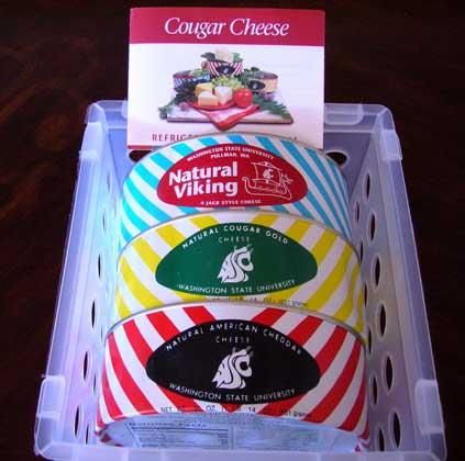 Cougar-Cheese