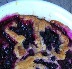 Blueberry-Butterfly-Pud